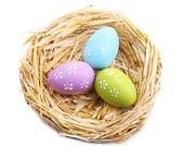 Huevos de Pascua en nido aislado en blanco — Foto de Stock