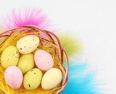 Uova di Pasqua nel nido e piume decorative, isolate su bianco — Foto Stock