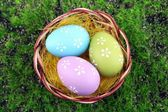 Easter eggs in nest on green grass background — Stock Photo