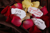 Beautiful red rose petals and greeting cards, close up — Foto Stock