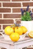 Still life with fresh lemons and lavender — ストック写真