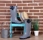 Pair of colorful gumboots, plant in pot, chair and watering can  on color wall background — ストック写真