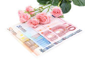Beautiful roses and money, isolated on white — Stockfoto