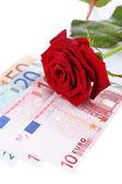 Beautiful rose and money, isolated on white — Stock Photo