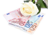 Beautiful rose and money, isolated on white — Stok fotoğraf