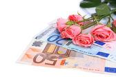 Beautiful roses and money, isolated on white — Stock Photo