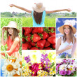 Collage of summer time — Stock Photo #43662819