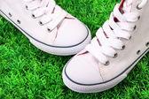 Beautiful gumshoes on green grass background — Zdjęcie stockowe
