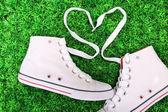 Beautiful gumshoes on green grass background — Stok fotoğraf