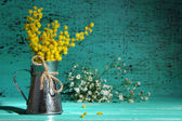 Twigs of mimosa flowers in vase on blue wooden table — Stock Photo