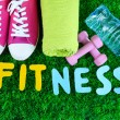 Fitness and healthy life. Conceptual photo. Gumshoes, towel, dumbbells and water bottle on green grass background — Stock Photo #43869893