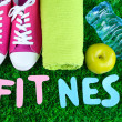 Fitness and healthy life. Conceptual photo. Gumshoes, towel, dumbbells and water bottle on green grass background — Stock Photo #43869911
