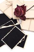 Fotos antiguas en blanco, cartas y flores secas, aislado en blanco — Foto de Stock