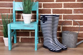 Pair of colorful gumboots, plant in pot, chair and watering can  on color wall background — 图库照片