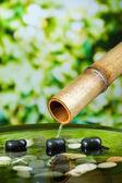 Spa bodegón con fuente de bambú, sobre fondo brillante — Foto de Stock