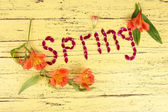 Romantic spring letters made of pink petals, on color wooden background — Stock Photo