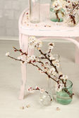 Beautiful apricot blossom in transparent jars on grey wall background — Stock Photo