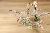 Beautiful apricot blossom in transparent jars on wooden background — Stock Photo