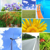 Collage of beautiful nature — Foto Stock