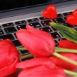 Red hearts and flowers on computer keyboard close up — Zdjęcie stockowe