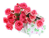 Beautiful small pink roses, isolated on white — Stock Photo
