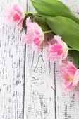 Beautiful tulips on wooden background — Stock Photo