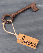 Key to success, Conceptual photo. On color wooden background — 图库照片