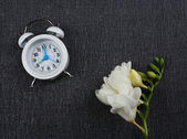 Alarm clock and beautiful flowers on grey background — Stock Photo