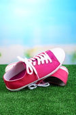 Beautiful gumshoes on green grass, on bright background — Foto Stock
