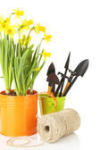 Composition with garden equipment and flowers in watering can isolated on white — Stock Photo