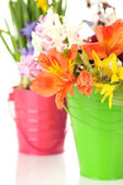 Beautiful flowers in metal buckets  close up  — Stock Photo