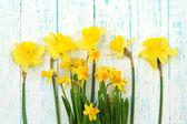 Vackra blommor på färg trä bakgrund — Stockfoto