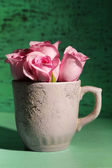 Beautiful roses in cup on green background — Stock Photo