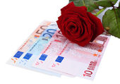 Beautiful rose and money, isolated on white — Zdjęcie stockowe