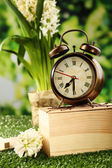 Alarm clock on green grass, on nature background — Stock Photo