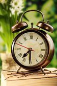 Alarm clock on nature background — Stock Photo