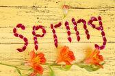 Романтический весенний буквы изготовлены из розовых лепестков, на цвет фона и деревянные — Стоковое фото