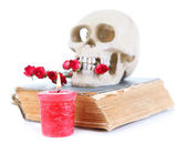 Skull with dried roses on old book and candle isolated on white — Stock Photo
