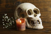 Skull and candle on wooden background — Stock Photo