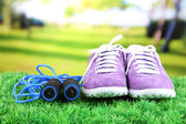 Beautiful gumshoes on green grass, on bright background — Stock Photo