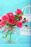 Beautiful small pink roses, on blue background — Stock Photo