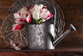 Beautiful tulips in watering can on wooden background — Stock Photo