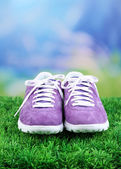 Beautiful gumshoes on green grass on bright background — Stock Photo
