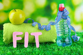 Fitness and healthy life. Conceptual photo — 图库照片