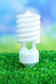 Energy saving light bulb on green grass, on bright background — Stockfoto