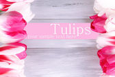 Beautiful tulips on color wooden background — ストック写真