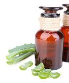 Fresh green aloe leaves and medicine bottles, isolated on white — Stock Photo