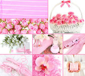 Collage of photos in light pink colors — Stockfoto