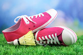 Beautiful gumshoes on green grass on bright background — 图库照片