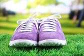 Beautiful gumshoes on green grass background — 图库照片
